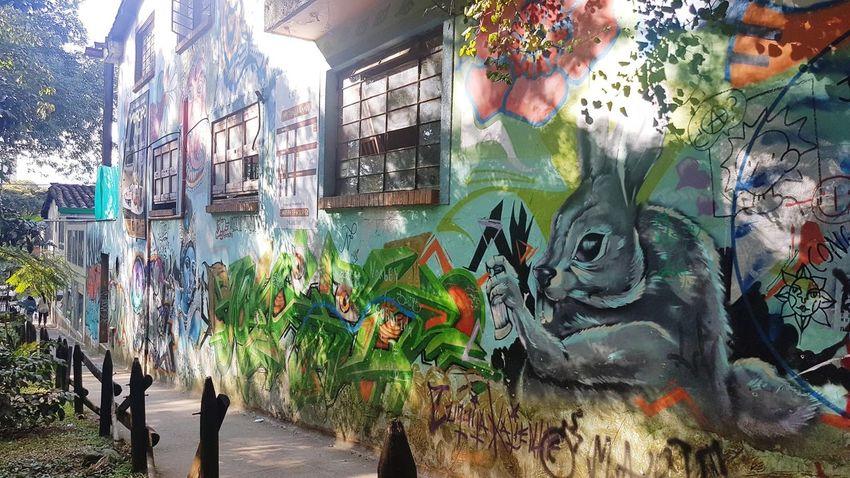 Multi Colored Street Art Graffiti Art And Craft Creativity Artist Architecture Building Exterior Built Structure ArtWork Mural Spray Paint Wall