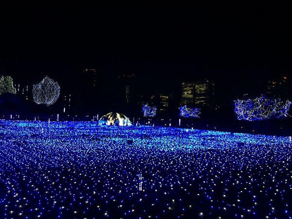 東京ミッドタウン ミッドタウン イルミネーション Tokyomidtown Midtown Illumination