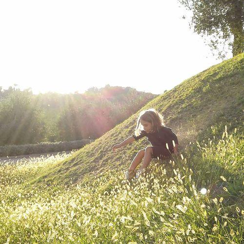 Child Tree Childhood Full Length Sunlight Summer Girls Happiness Sky Grass