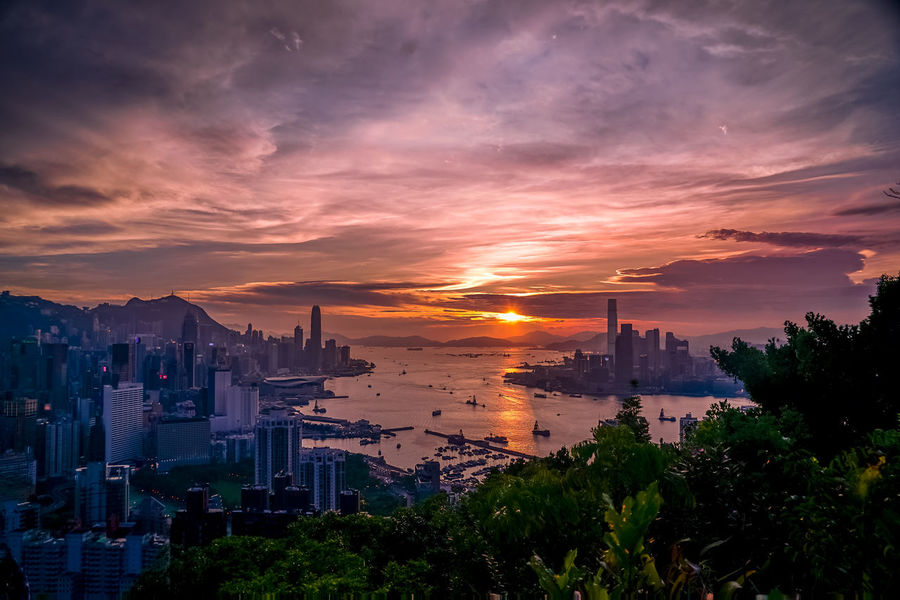 EyeEm Best Shots EyeEmNewHere HongKong Architecture Beauty In Nature Building Building Exterior Built Structure City Cityscape Cloud - Sky High Angle View Modern Nature No People Office Building Exterior Orange Color Outdoors Plant Scenics - Nature Sky Skyscraper Sunset Tree Water