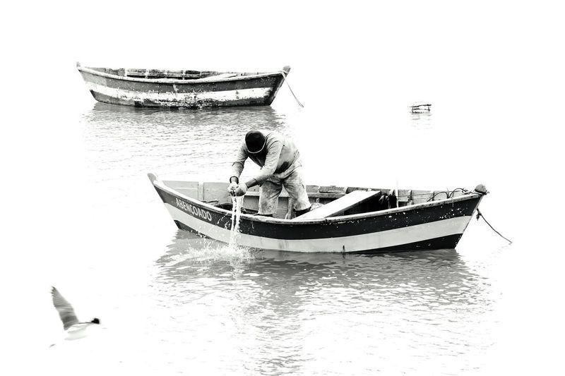 Fisherman Ligth