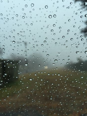 Rain Rain Drops Rain Drops On Window Nature In The Background Cold Temperature Feel The Journey Cold Weather No People Taken With IPhone 6 No Sun Day Time Colour As Is No Edit/no Filter