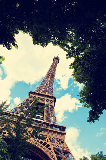 Eiffel Tower Tree Architecture Building Exterior Built Structure City Cloud - Sky Day Famous Place History Low Angle View Nature No People Outdoors Plant Sky Spire  Tall - High Tourism Tower Travel Travel Destinations Tree
