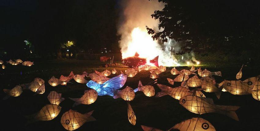 Lanterns and Fireworks from tonight's Leaping Lights Salmon Festival .... Newtown Powys Fish Fire Night Illuminated Burning Flame Dark Bonfire Culture рыбы лосось огонь фонарики фестиваль