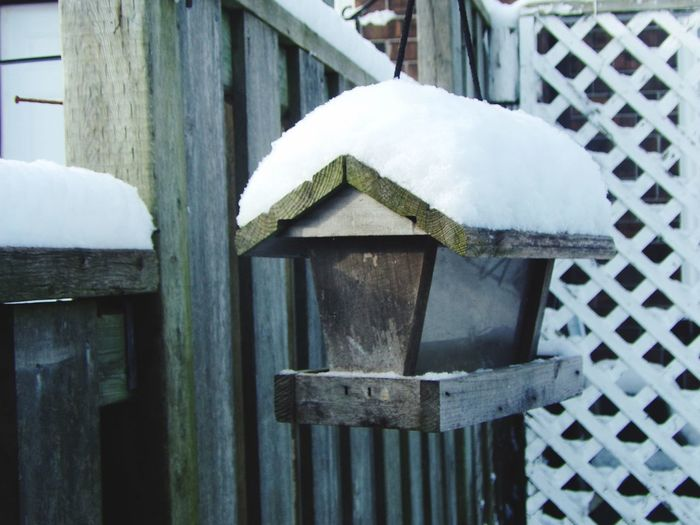 Backyard photography series: Snow covered birdhouse Bird Feeder Hanging Bird House No People Wood - Material Day Metal Boundary Close-up Fence Built Structure Cold Temperature Outdoors Winter Nature Snow Pattern Protection