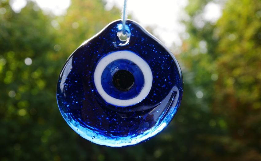 Close-up of blue fish hanging on tree