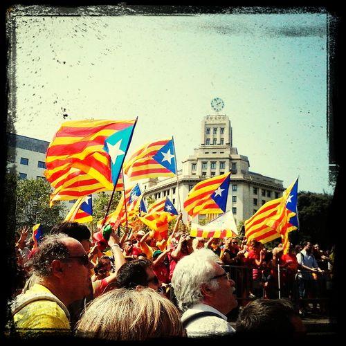 Plaça Catalunya 11/09/2014