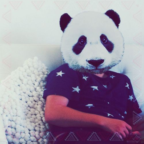 Panda Enjoying Life Relaxing