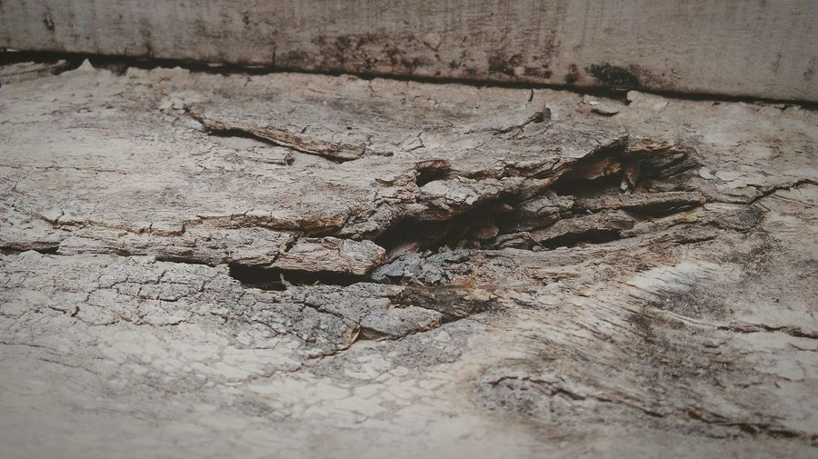 Close-up of cracked wall