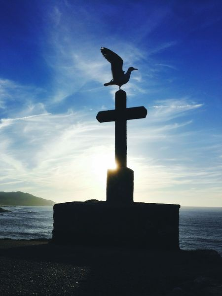 Cross Outdoors Silhouette Statue Day No People Cloud - Sky Sunset Sculpture Bird Silhouette Beach Nature Bird Scenics Reflection First Eyeem Photo Low Angle View Nature Landscape Water Castillo Bayona Birds Wildlife Stone Cross Seagull Horizon Over Water Sea Beauty In Nature Spirituality Animal Themes Tranquility