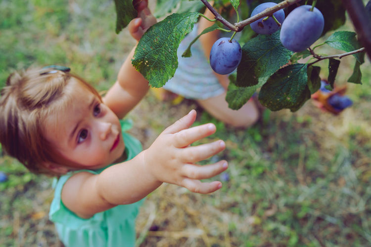 Baby girl standing by fruit tree on land