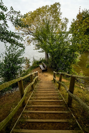 it's autumn and nobody kehrs Autumn Scharmützelsee Bad Saarow Diensdorf-Radlow Brandenburg Germany Deutschland Lake See Travel Travel Destinations Moody Nature Tree Water Lake Sky EyeEmNewHere