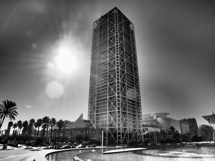 Barcelona ,Palms ,sun and skyscrapers Ig_asti_ Barceloneta Ig_biancoenero _world_in_bw Dsb_noir Eranoir Bnwitalian  Excellent_bnw Ig_worldbnw Vivobnw Igclub_bnw Loves_noir Igs_bnw Ig_contrast_bnw Master_in_bnw  Top_bnw Tv_pointofview_bnw Bycicles Ig_italia_ Barcellona Featuredmeinstagood Ig_bcn Photowall Allshots_ Hot_shotz phototag_it visualsoflife shadowhunters