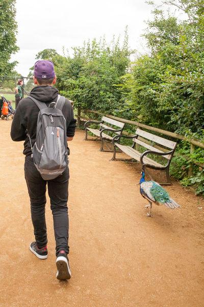 The Week On EyeEm Walk Nature