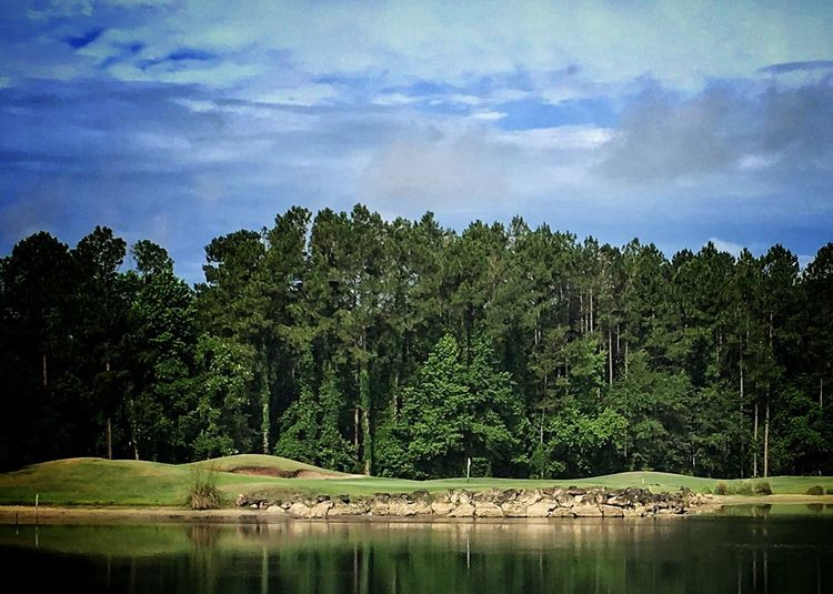 On my morning walk, I love the view of this hole at the North Hampton Golf Course. Water Tranquility Beauty In Nature Reflections In The Water Trees And Sky Rocks Golf Course View Fernandina Beach, Florida USA