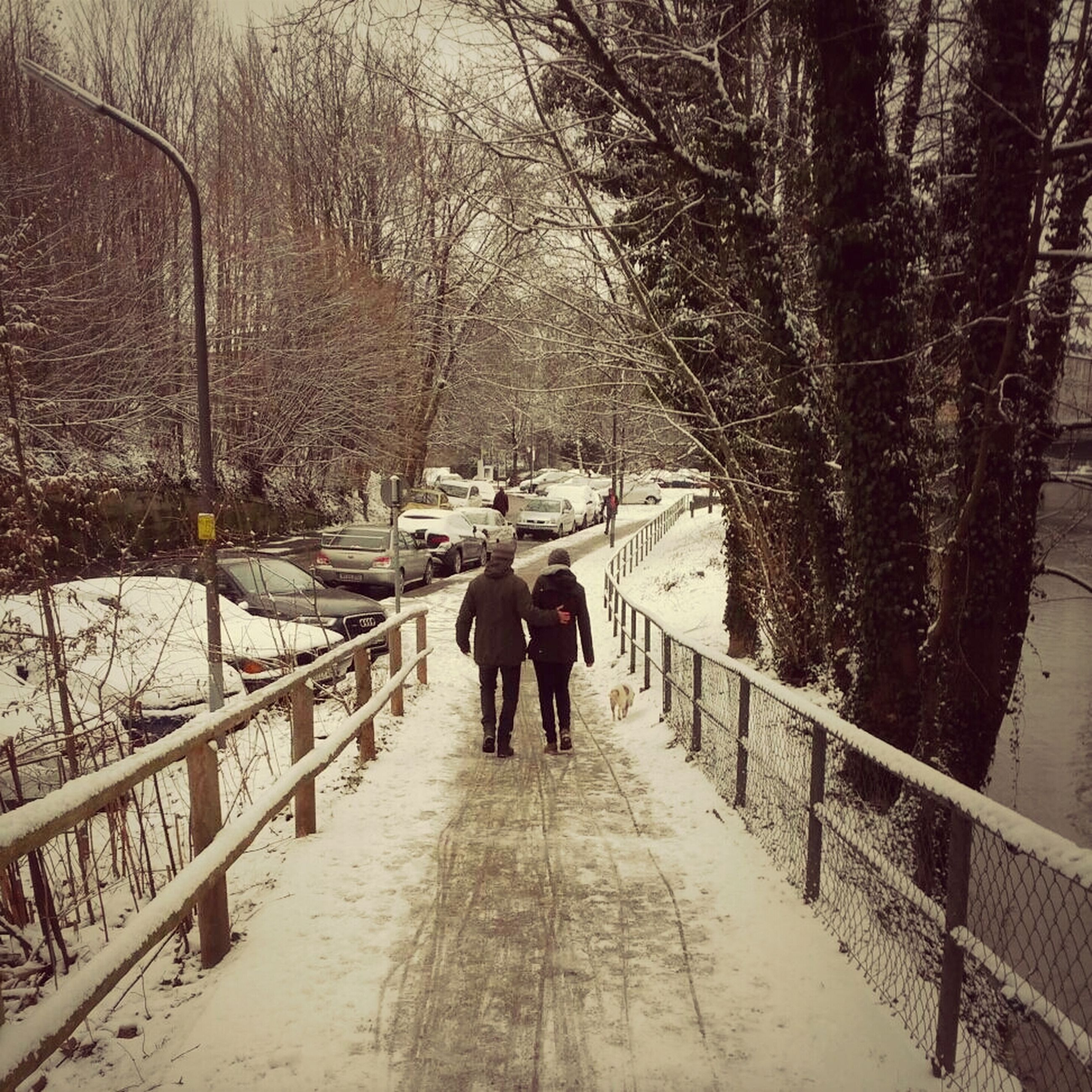 walking, rear view, the way forward, full length, men, tree, transportation, lifestyles, diminishing perspective, leisure activity, person, season, vanishing point, on the move, railing, winter, togetherness, mode of transport