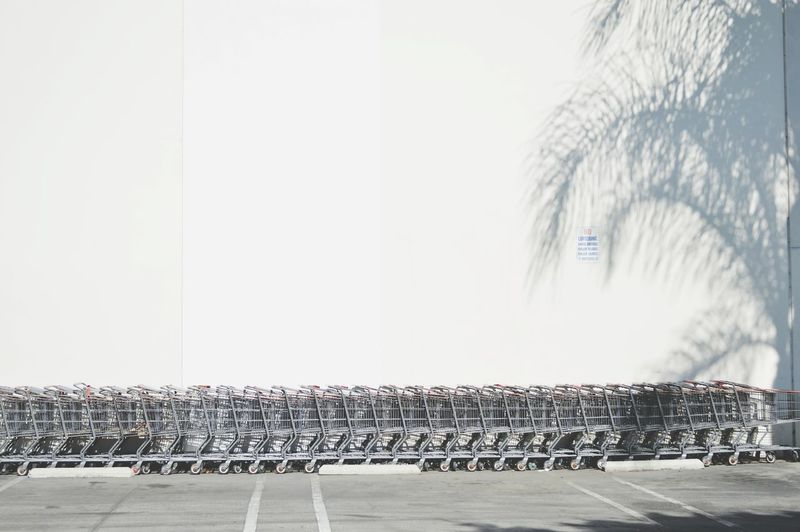 Shopping Cart White Wall Shadow Palm Tree Silhouette Palm Tree Shadow Market Reviewers' Top Picks