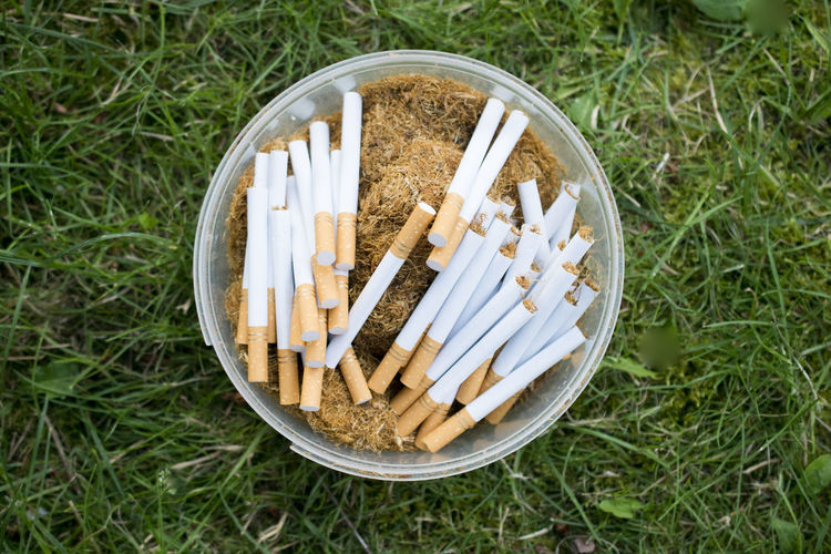 cigarettes and tobacco Container Smoking Tobacco Above Addiction Ashtray  Bad Habbit Bad Habit Cigarette  Cigarette  Close-up Directly Above Excess Field Grass Green Color High Angle View Matchstick Nature Nicotine Plant Plastic Cans Sign Smoking Issues Still Life