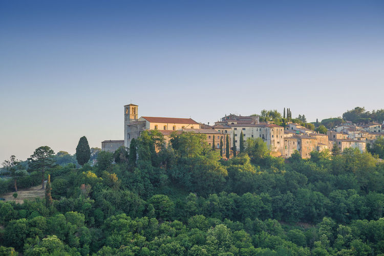 Scansano in Tuscany, Italy at dusk Tuscany Tuscany Countryside Architecture Building Exterior Built Structure Clear Sky Day Dusk Forest Growth History Italy Medieval Medieval Architecture Nature No People Outdoors Plant Scansano Sky Tourism Tourism Destination Tree