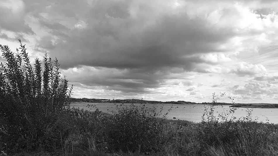 Wiew Walking Around Autumn IPhoneography Clouds And Sky October Cloudy Day Black And White Sea Beauty In Nature