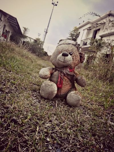 Toys Samsungphotography Huaweiphotography P10 Plus Photography Blackandwhite HUAWEI Photo Award: After Dark Huawei Photography P10lite P10 Bear Scary Doll Puppet Toy Animal Scarecrow Abandoned Residential Structure Building Toy