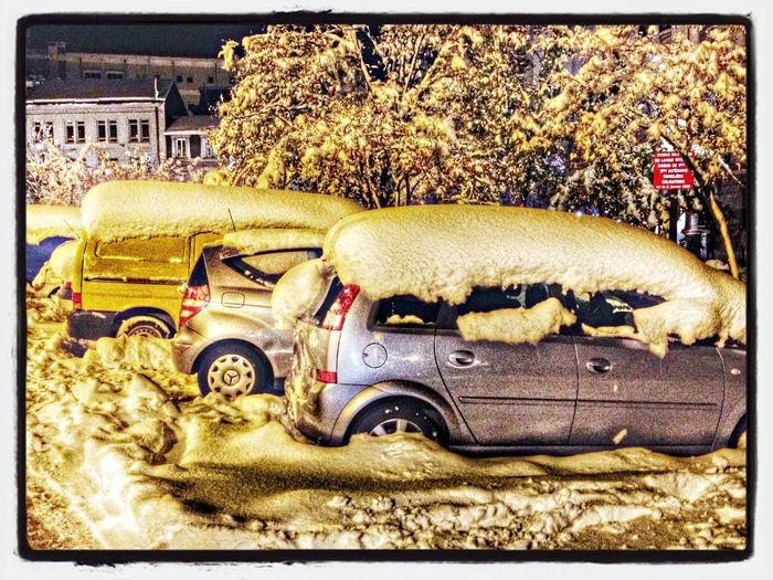 Taking Photos Hello World Snow Streetphotography