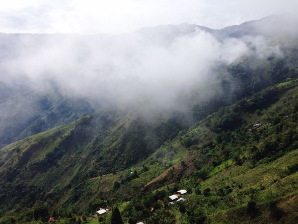 Clouds And Mountains Colombia Travel Destinations Exploring View From Above In The Clouds Antioquia In The Mountains Scenics - Nature Beauty In Nature Plant Landscape Environment Mountain Tranquil Scene Tree Growth Tranquility Land Fog Nature Green Color Non-urban Scene High Angle View Remote Outdoors