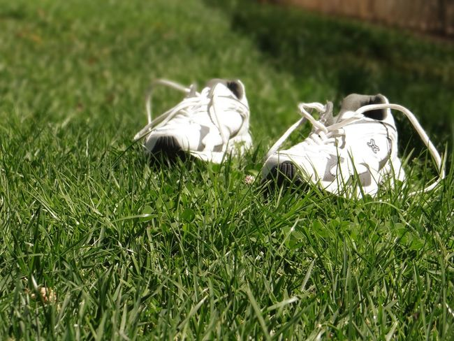 These shoes are made for running Sports Grass Plant Field Green Color No People Nature Land Day Shoe Close-up Outdoors