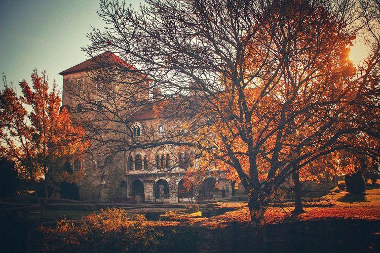Castle Tata,