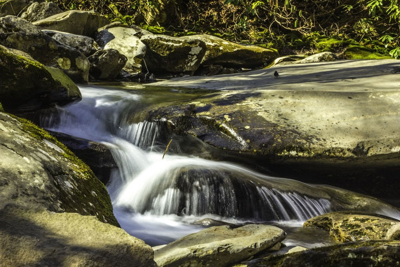 Beautiful waterfalls, green moss on the rocks in the creek. Beauty In Nature Big Rocks Clean Water Beautiful Creek Day Flowing Flowing Water Forestwalk Green Moss Mountains Nature Non-urban Scene Outdoors Scenics Tranquility Travel Photography Waterfall_collection Waterfalls EyeEm Nature Lover Eyeem Photography