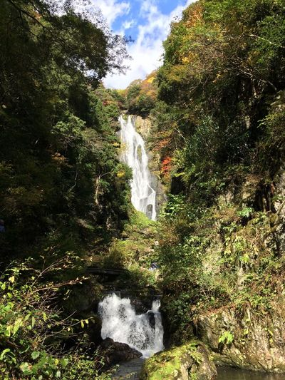Japan Traveling Waterfall On The Road
