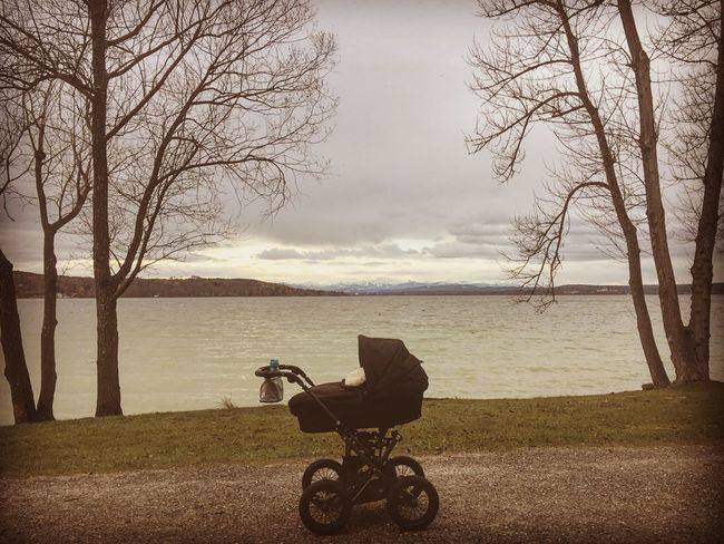 Bare Tree Tree Water Sea Sky Tranquility Day Nature Branch Tranquil Scene Outdoors Baby Stroller Beauty In Nature No People Tree Trunk Scenics Horizon Over Water Wheelchair First Eyeem Photo