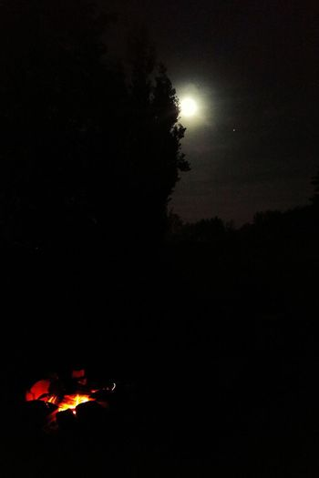 Check This Out Taking Photos Trees In The Forest EyeEm Nature Lover Clouds And Sky Spooky Moon Moon Light Moonshine Moon Shots Fire Bonfire MayLongWeekend