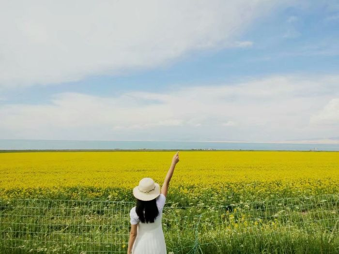 One Person Yellow Rear View Agriculture Sky Field