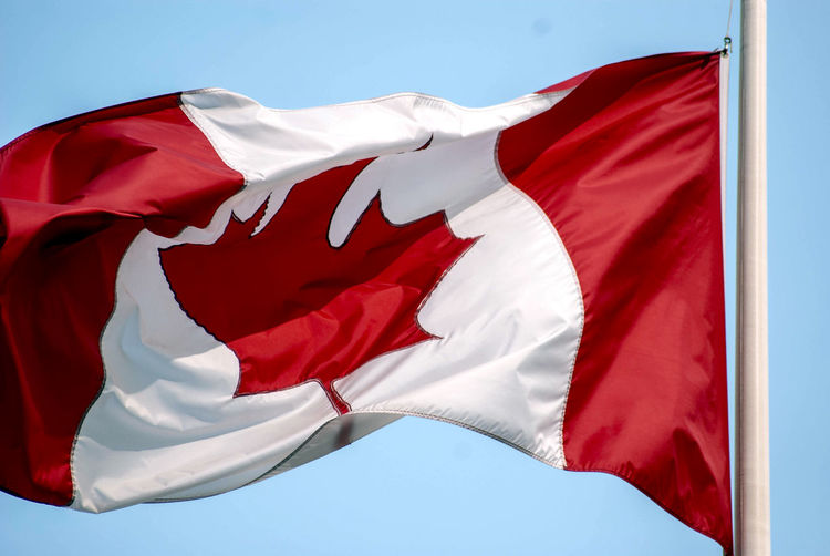 Red Flag Wind Environment White Color Sky No People Nature Waving Maple Leaf National Icon Canada Canadian Flag