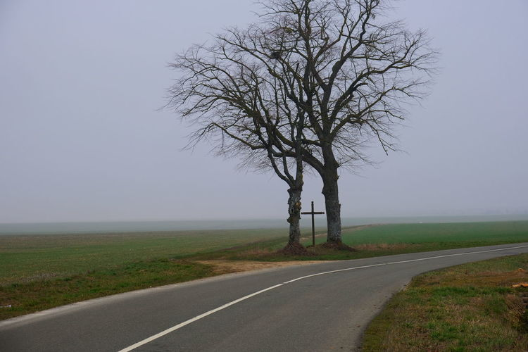 Two trees and a cross No People Road Tree Bare Tree Landscape Nature Environment Tranquility Fog Field Cross