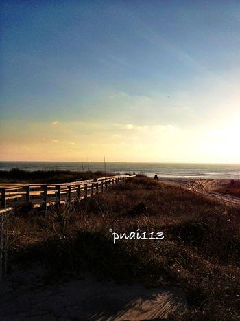 Strolling Along The Beach Eye4photography  EyeEm Nature Lover EyeEm Best Shots