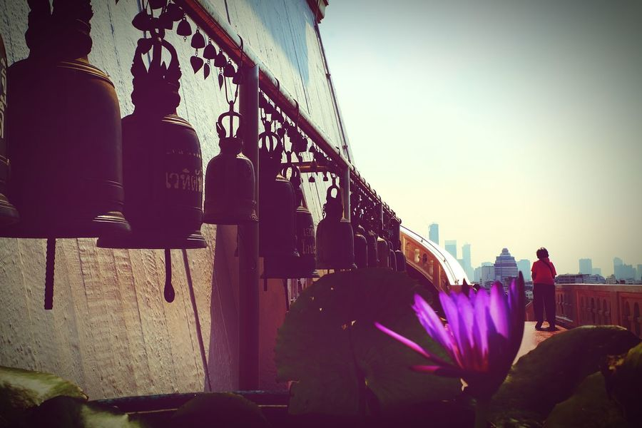 Adult Outdoors People One Person Clear Sky Flower Travel Destinations Buddha Temple Buddha Temple, Thailand Outdoor Photography Bangkok Thailand. Travel