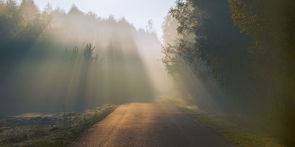 Beam of sun light comming though trees on an empty road Autumn Beauty In Nature Belief Day Fog Foggy Forest God Hazy  Idyllic Landscape Mist Mistic Nature No People Outdoors Scenics Sky Sunbeam Tranquil Scene Tranquility Travel Destinations Tree Water Waterfall