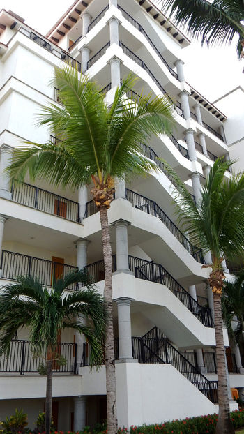 Andrevieira Architecture Building Exterior Built Structure Cancun Day EyeEm Gallery Ferias2015 Fotografering FotoTurismo Férias Grandparkroyal No People Outdoors Palm Tree Photo Photografie Photographie  Photography Portrait Portrait Photography Vocation Welcome Weekly