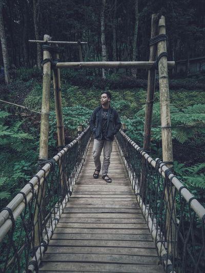 Full length of man on footbridge in forest