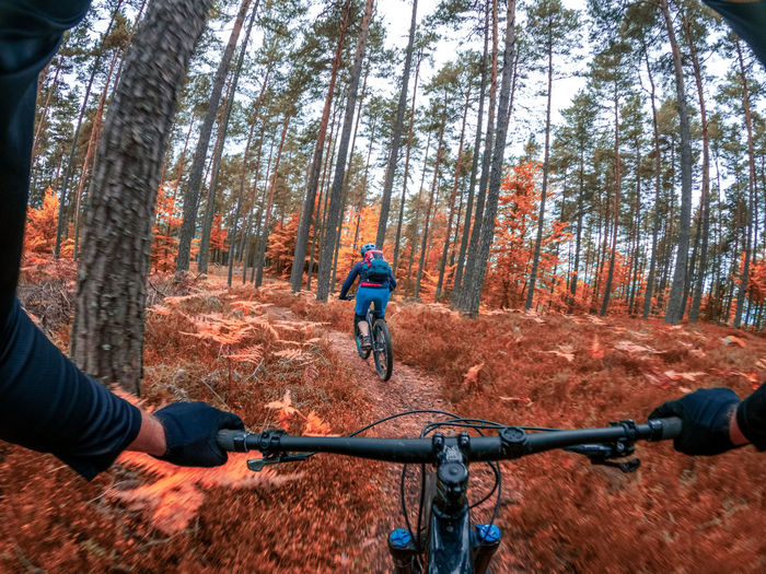 Gopro first person view following a woman mountain biking on footpath in forest in autumn.