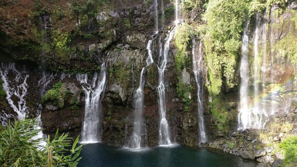 Water Tree Nature Beauty In Nature No People Waterfall Tranquility La Réunion  Reunion Island Scenics Falls Cascade