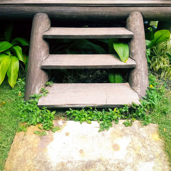 Built Structure Day Footpath Grass Leaf No People Sunlight Wood Wood - Material Woodstair Woodstep