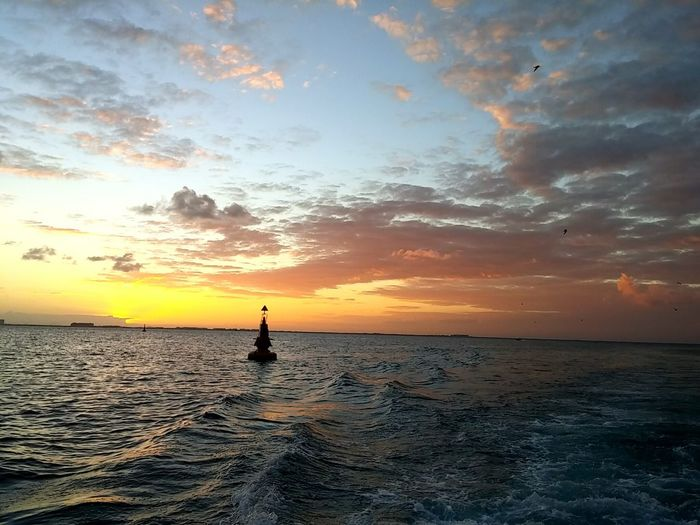 The Great Outdoors With Adobe Wake Ocean Sunset Ocean Sunset  Vacation Enjoying Life On The WaterFresh On Eyeem  Boating Cancun Mexico Buoy In Water Buoy In Ocean Buoy In Sea The Great Outdoors - 2016 EyeEm Awards Buoy Buoy At Sunset Buoy On The Water Buoy On The Ocean