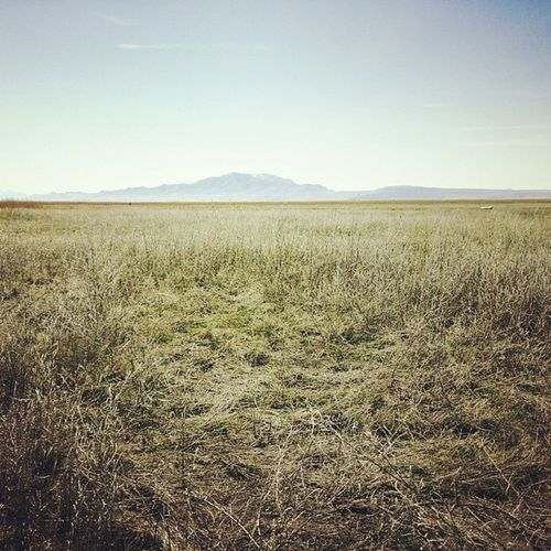 Open range.. Utah Utahgram Ig_utah Igutah_801 awesome winter westernlandscapes vscocam landscape beautiful