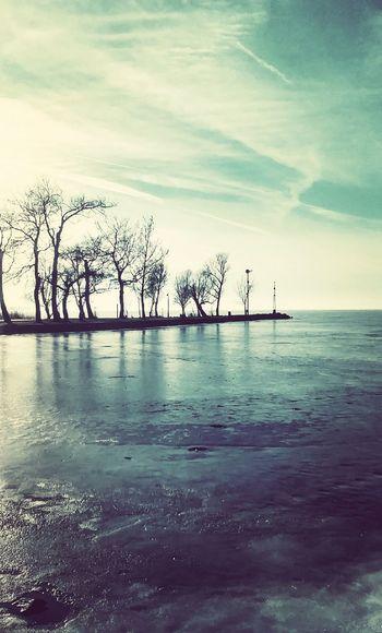 Tree Tranquility No People Reflection Winter Landscape Frozen EyeEm Wintertime Balaton - Hungary Structures