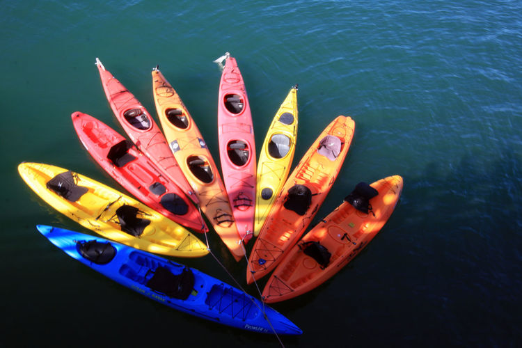 Kayaks on a lake California Dreamin California Santa Cruz, Ca. Pacific Ocean Close-up High Angle View Kayak Kayaks In Racks Kayaks On A Lake Large Group Of Objects Nautical Vessel No People Outdoors Variation Water Paint The Town Yellow The Week On EyeEm Been There. Done That. Multi Colored Perspectives On Nature California Dreamin Assortment Variety