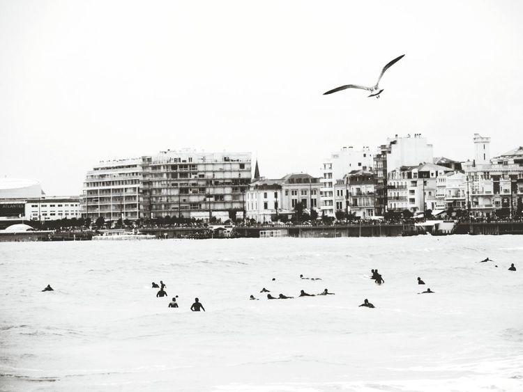 Les Sables-d'olonnes Vague Vendée Surf Photography