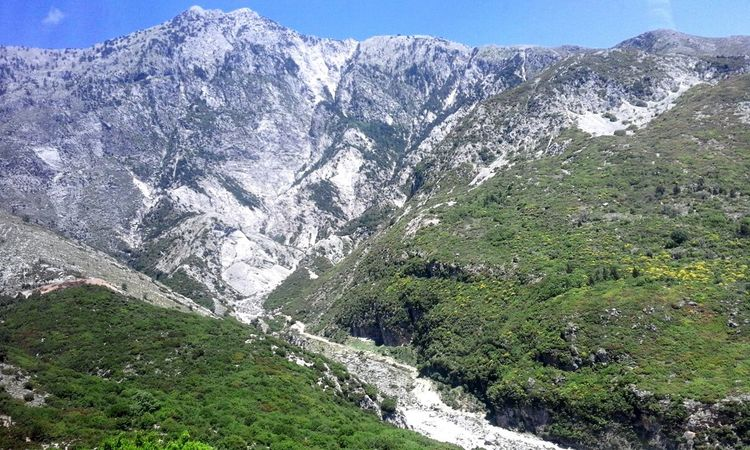 Perspectives On Nature Mountain Green Sky Trees Beauty Nature ALBANIA❤️ Postcode Postcards